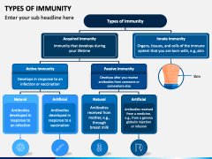 Types of Immunity PPT Slide 1