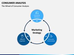 Consumer Analysis PPT Slide 2