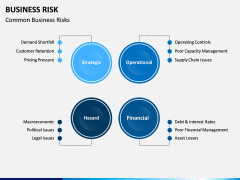 Business Risk PPT Slide 10