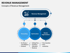 Revenue Management PPT Slide 4