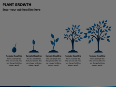 Plant Growth Animated Presentation - SketchBubble