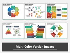 Network Organization Multicolor Combined