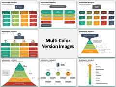 Management Hierarchy Multicolor Combined