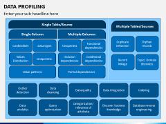 Data Profiling PPT Slide 6