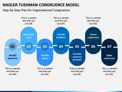 Tushman Congruence Model PPT Slide 3