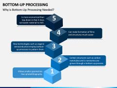 Bottom-Up Processing PPT Slide 3