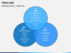 Triple Aim PPT Slide 7