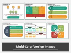 Organization Types Multicolor Combined