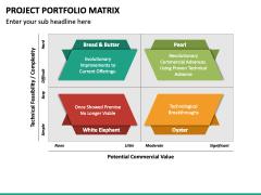 Project Portfolio Matrix PPT Slide 4