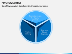 Psychographics PPT Slide 5