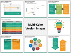 Project Cost Management Multicolor Combined